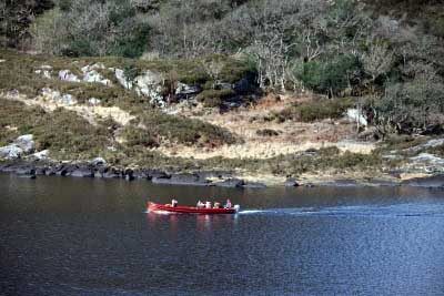 Boat tours Upper lake Killarney