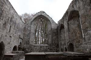 Muchross Abbey Killarney