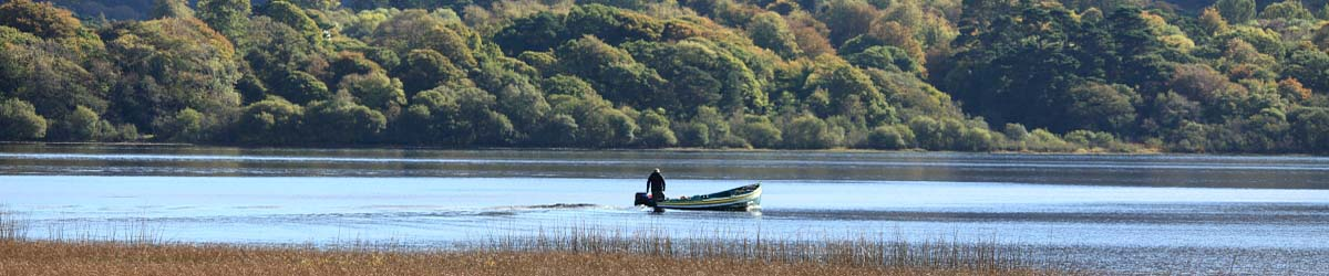 Fishing in Killarney