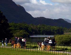 Killarney Jaunting Car
