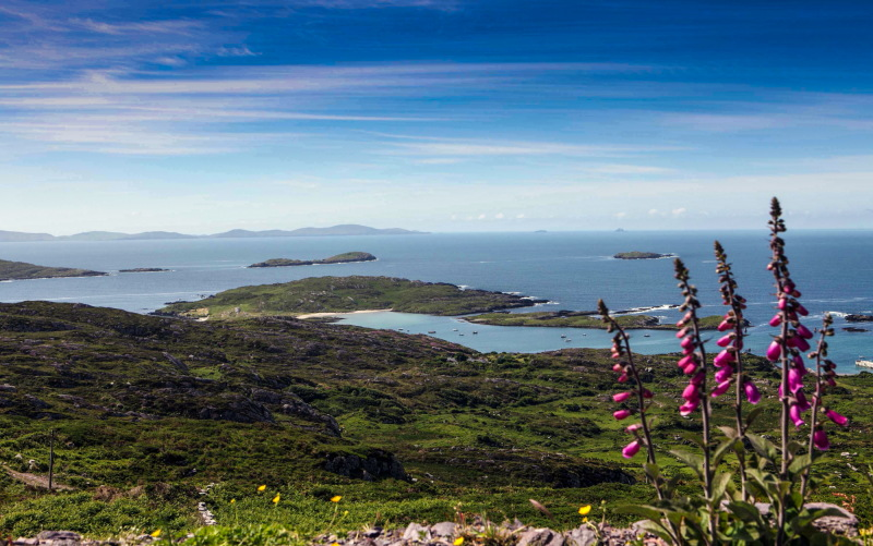Killarney & the Ring of Kerry News