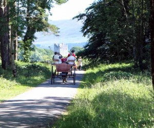 Jaunting car tours