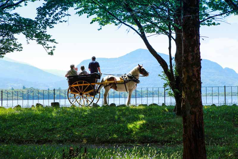 Jaunting Car tours in the National Park