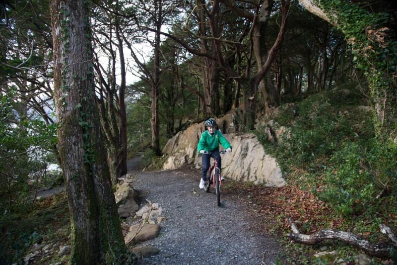 Cycling Killarney national park