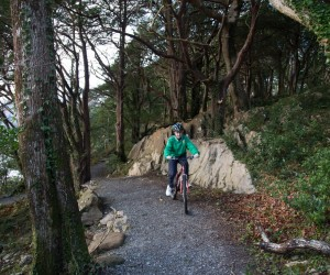 Cycling Killarney national park