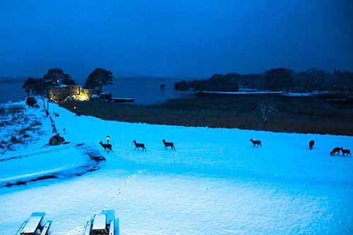 killarney-snow-2018