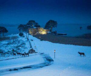 killarney_hotels_lake_deer